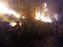 Gần 1.000 người trắng đêm chữa cháy rừng thông 15 năm tuổi