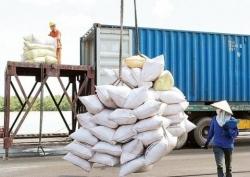 Lo ngại gian lận, Bộ Công thương kiểm tra 5 doanh nghiệp xuất nhập khẩu gạo