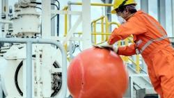 Công ty Đường ống Khí Nam Côn Sơn tăng cường biện pháp phòng Covid-19 trong tình hình mới