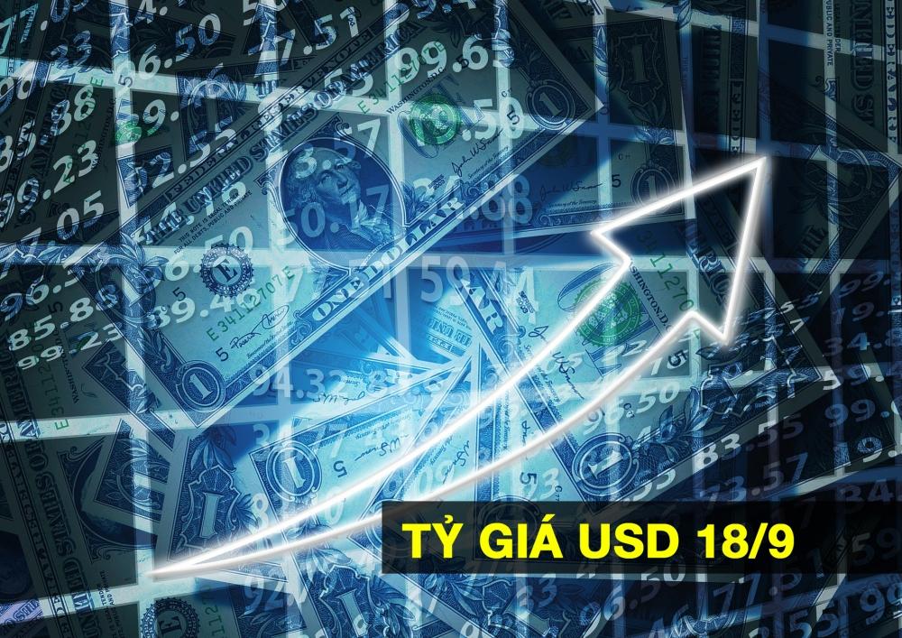 Tỷ giá ngoại tệ hôm nay 18/9: USD Tiếp đà tăng, Euro giảm mạnh