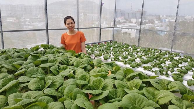 Gia đình trẻ biến sân thượng trống thành 'khu vườn trên mây' - ảnh 1