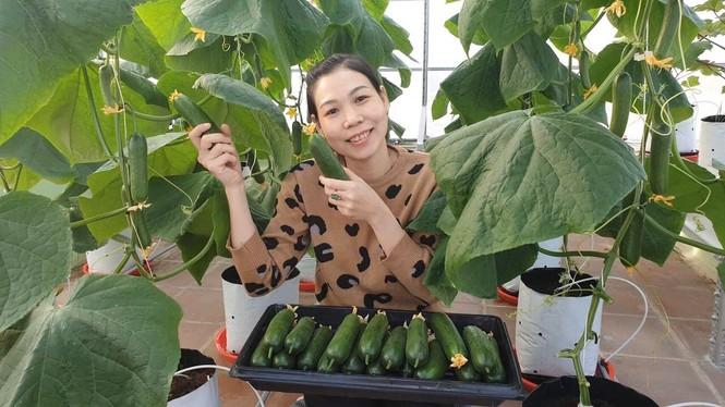 Gia đình trẻ biến sân thượng trống thành 'khu vườn trên mây' - ảnh 2