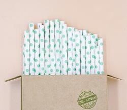 Sử dụng ống hút giấy Eco Straws: Vì một hành tinh xanh