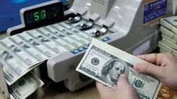"""Tỷ giá ngoại tệ 14/11: Đồng USD """"đóng băng"""""""