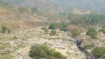 Kon Tum: Thủy điện tích nước khiến hoa màu chết khô, yêu cầu hỗ trợ thiệt hại cho người dân
