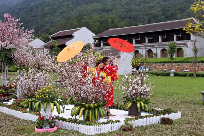 Nhiều bạn trẻ thuê trang phục truyền thống Nhật Bản để chụp ảnh bên những chùm hoa Anh Đào.