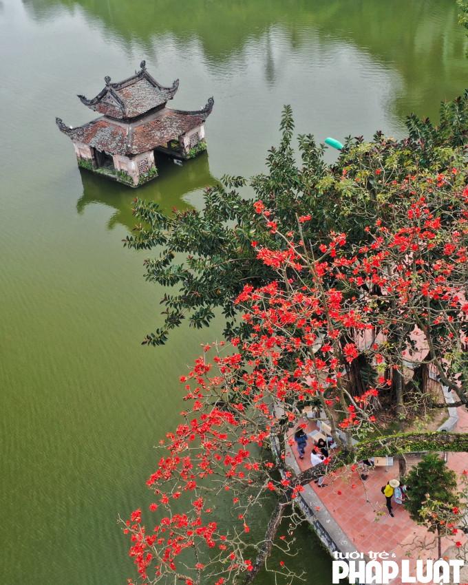 Tháng 3, hoa Gạo rực đỏ, nổi bật ngay cả khi nhìn từ trên cao.