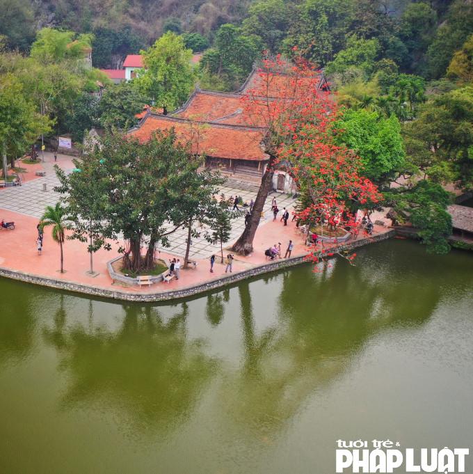 Nhiều du khách thư giãn, chụp ảnh dưới tán cây hoa Gạo rủ đỏ sân chùa Thầy