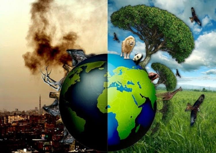 Thay đổi tư duy tiêu dùng để bảo vệ Trái đất