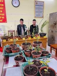 Thanh Hóa: Bắt 2 đối tượng chuyên trộm phong lan đột biến liên tỉnh