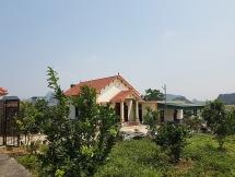 Hà Trung - Thanh Hóa: Biến đất lâm nghiệp thành đất ở