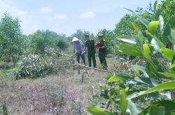 Thanh Hóa: Bắt 3 đối tượng chặt phá rừng cây keo của người dân