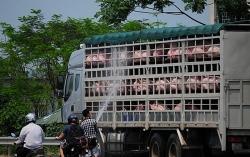 Thanh Hoá: Truy vết khẩn cấp người có liên quan tới lái xe mắc Covid-19 tại Vĩnh Phúc
