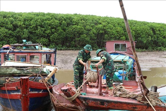 Toàn bộ lao động trên biển của tỉnh Ninh Bình đã vào bờ an toàn