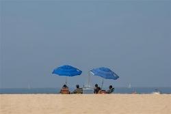 Mỹ: Bang California ban bố tình trạng khẩn cấp do nắng nóng