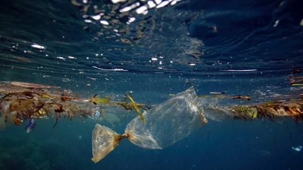 Lượng rác thải nhựa ở Đại Tây Dương cao hơn nhiều ước tính lâu nay