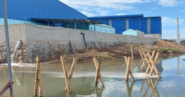 Thanh Hóa: Xả thải trực tiếp ra sông 2 công ty bị xử phạt gần 1 tỷ đồng