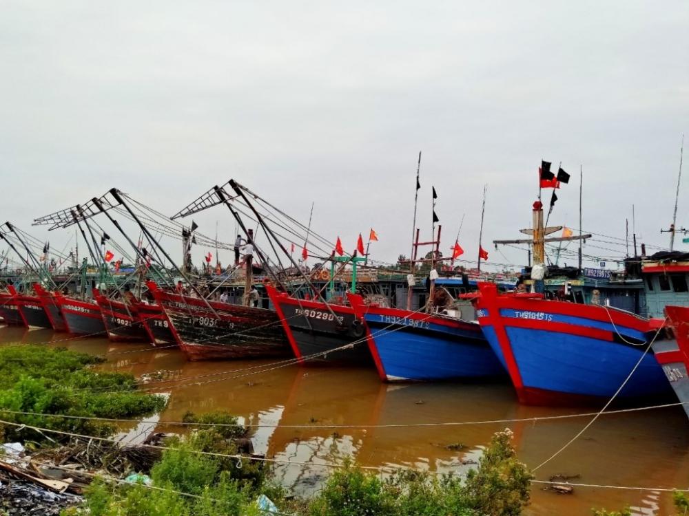 3 Phó Chủ tịch UBND tỉnh Thanh Hóa kiểm tra công tác phòng chống bão số 7