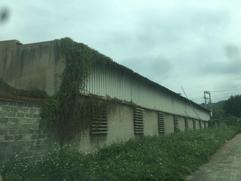 Đề nghị kiểm điểm tập thể, cá nhân huyện Như Xuân vụ Công ty Khánh Nam gây ô nhiễm