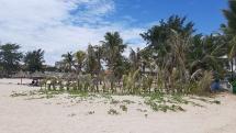 """Đà Nẵng: Hàng loạt khu nghỉ dưỡng """"hạng sang"""" lấn bãi biển trái phép"""