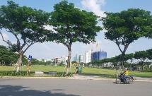 Thua kiện Vipico, chính quyền Đà Nẵng nộp đơn kháng cáo