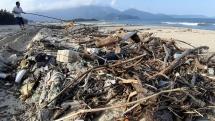 Đà Nẵng: Củi khô bủa vây 5 km bờ biển Xuân Thiều sau mưa