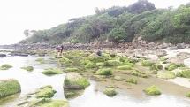 Đà Nẵng: Nam Ô sẽ có làng bích họa ven biển