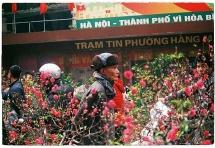 Cấm đường tổ chức chợ hoa xuân phố cổ trăm năm tuổi