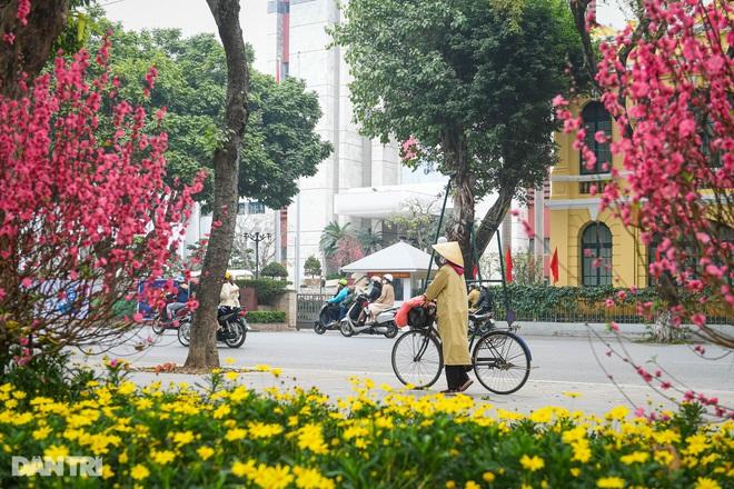 Hà Nội khoác áo mới rực rỡ chào đón Tết Tân Sửu 2021 - 3