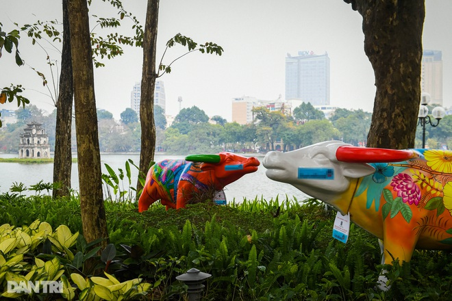 Hà Nội khoác áo mới rực rỡ chào đón Tết Tân Sửu 2021 - 8