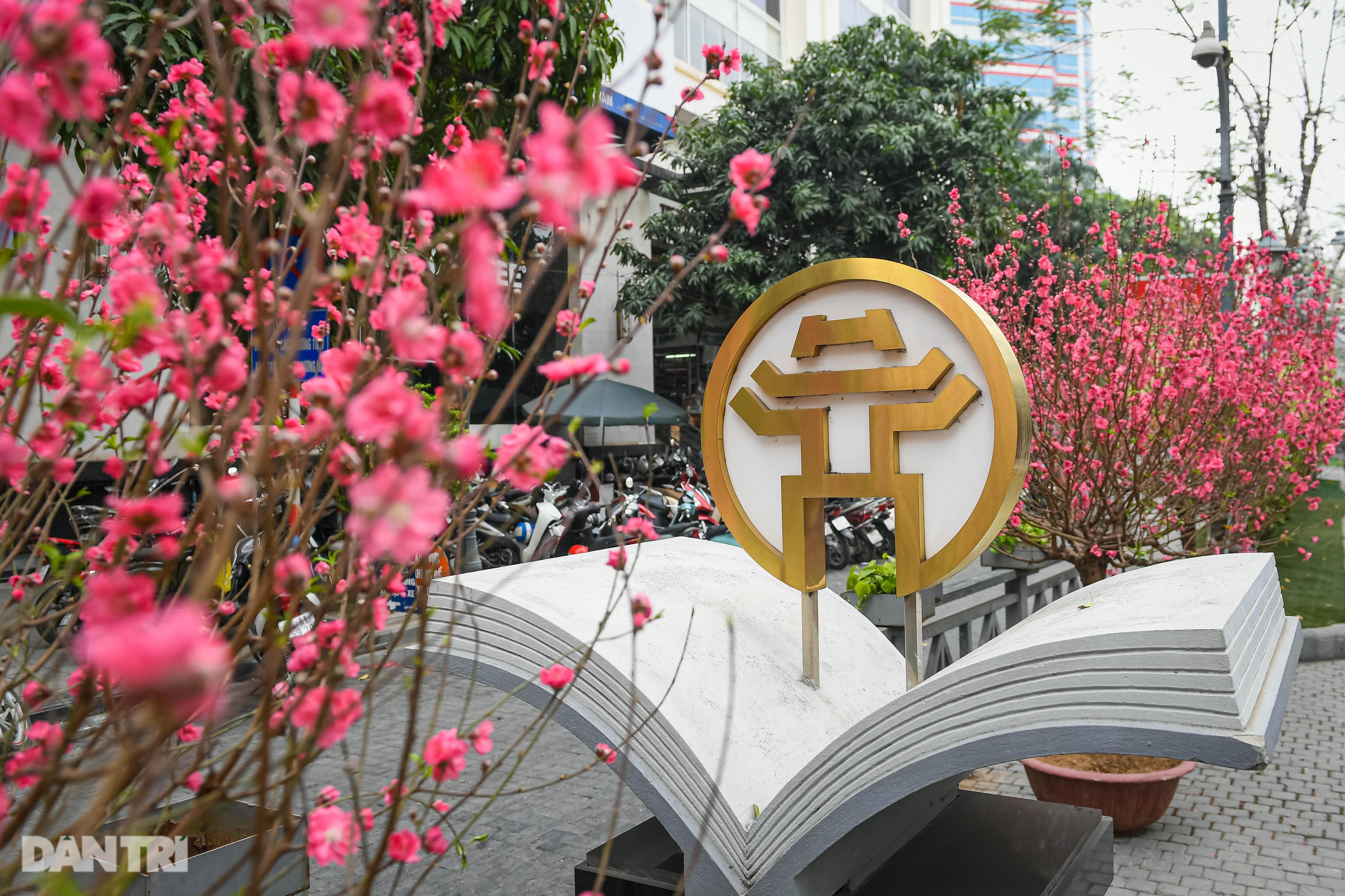 Hà Nội khoác áo mới rực rỡ chào đón Tết Tân Sửu 2021 - 14