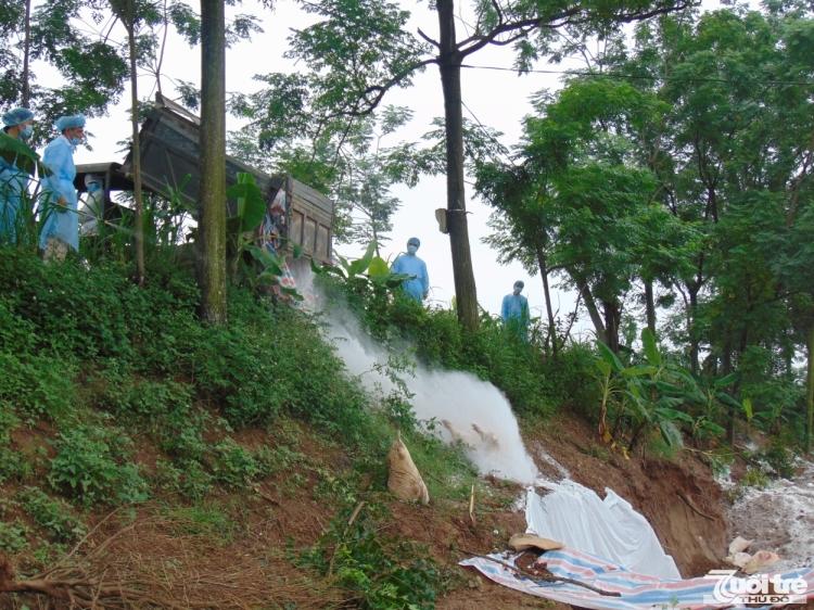Hà Nội không để thiếu kinh phí phòng, chống bệnh dịch tả lợn châu Phi