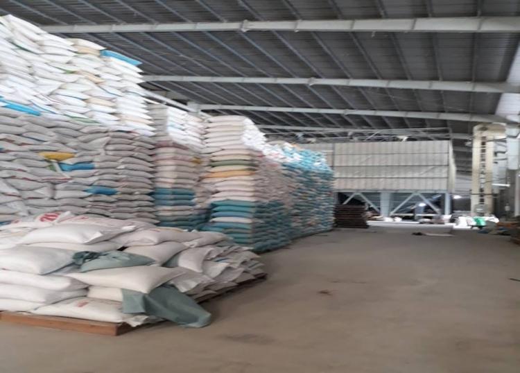 Thu mua lúa gạo dự trữ và xuất khẩu:Góc khuất đáng lo ngại