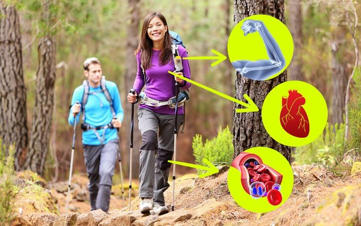 8 lợi ích của việc đi bộ mà bạn chưa biết
