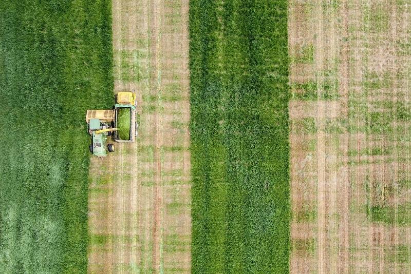 Phía sau những cánh đồng cỏ công nghệ cao lớn nhất thế giới ở Việt Nam