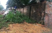 Người dân ở Hà Nội phản đối việc chôn 6 tấn lợn dịch trong vườn
