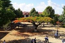 truong muon don phuong co thu muc rong