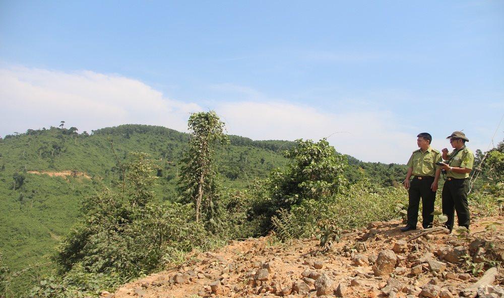 """Thừa Thiên Huế: Hơn 800ha rừng tự nhiên """"bốc hơi"""""""
