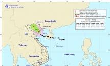 Bão số 2 đổ bộ Hải Phòng - Nam Định, gió giật cấp 11, mưa rất to