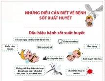 Bệnh nhân nhập viện do sốt xuất huyết gia tăng