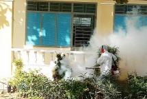 Hơn 87.000 ca sốt xuất huyết, Bộ Y tế ra công điện khẩn