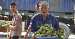 """Lạng Sơn: Thương lái đổ về chợ na lớn nhất miền Bắc, ngã giá """"đẹp"""" 40.000-50.000 đồng/kg"""
