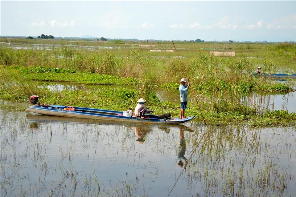 ĐBSCL: Đầu nguồn khát nước giữa mùa lũ