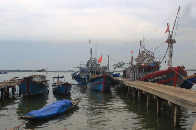 """Nhiều tỉnh miền Trung """"cấm biển"""", cho học sinh nghỉ học tránh bão - 4"""