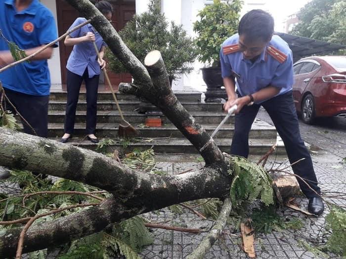 Những thiệt hại ban đầu do bão số 5