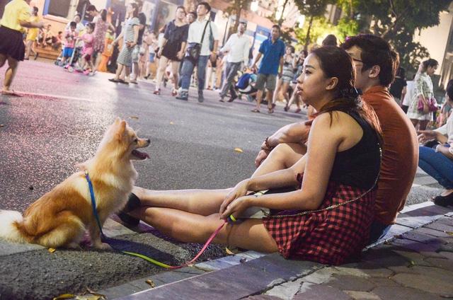 Hà Nội cấm nói tục, dắt thả vật nuôi ở phố đi bộ Hồ Gươm