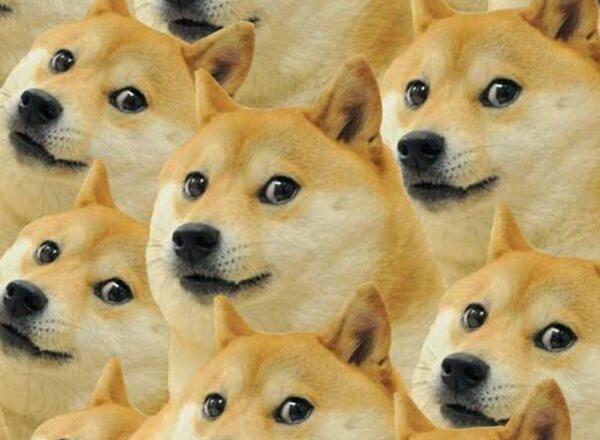 10 meme noi tieng nhat internet chac chan ai cung kinh qua mot lan