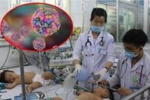 Đa số trường hợp tử vong do sốt xuất huyết đều nhập viện muộn