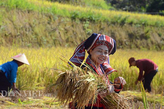 Đánh thức tiềm năng du lịch nông nghiệp, nông thôn:  - Ảnh 3.